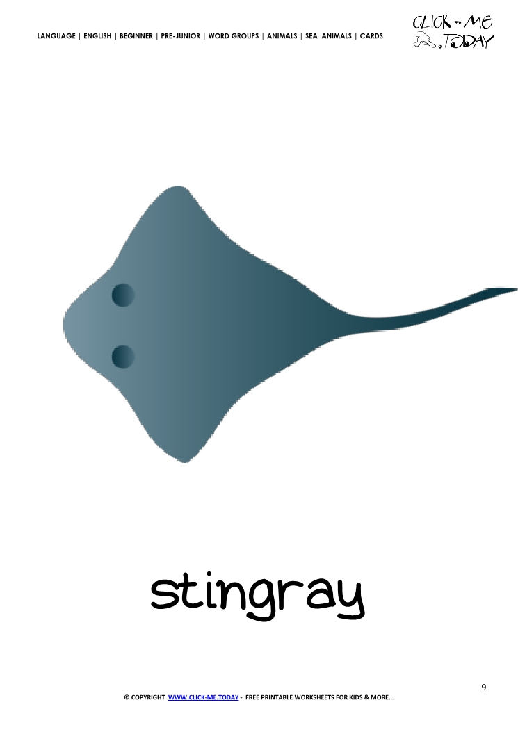 Sea animal flashcard Stingray - Printable card of Stingray
