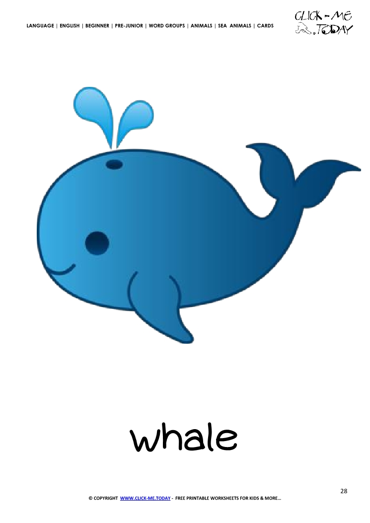 Sea animal flashcard Whale - Printable card of Whale