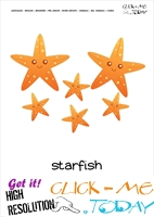 Sea animal flashcard Starfish - Printable card of Starfish Family