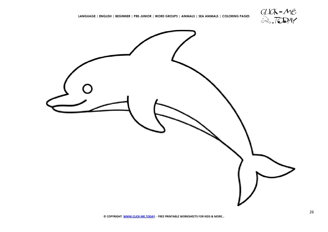coloring page dolphin color picture of dolphin