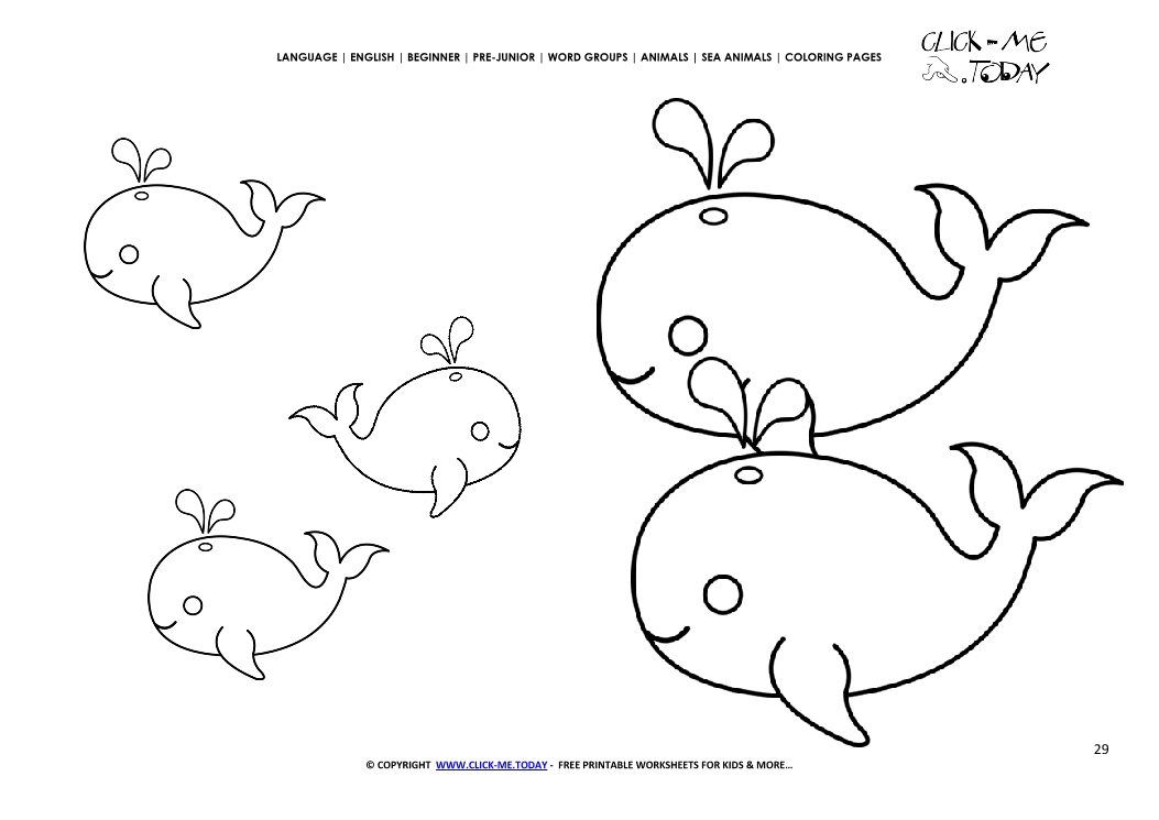Coloring Page Whales Color Picture Of Whales