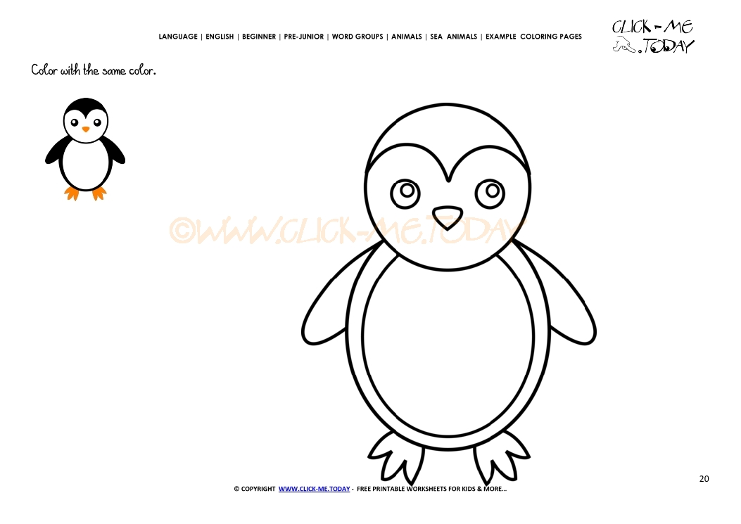 example coloring page little penguin color picture of penguin - Penguin Pictures To Color