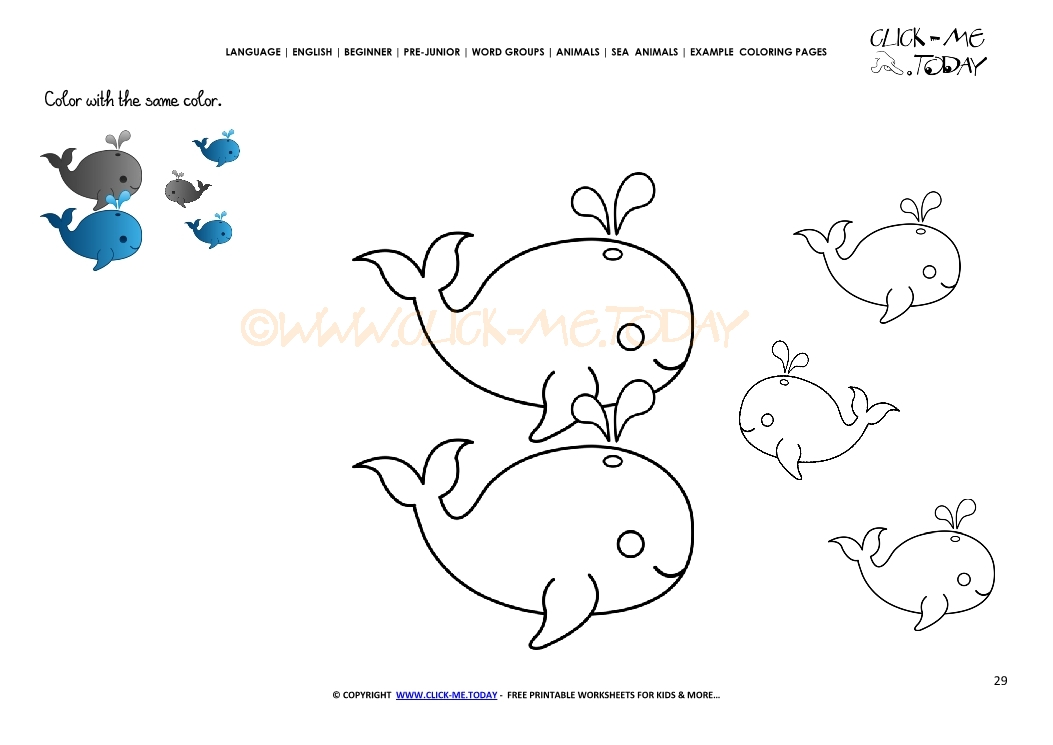 Example Coloring Page Whales Color Picture Of Whales