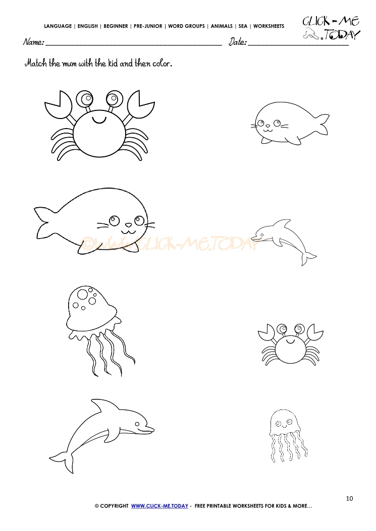 Ocean Animals Worksheets : Sea animals worksheet activity sheet match