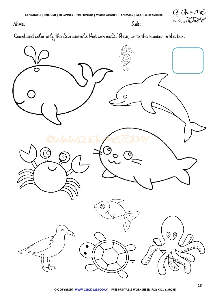 Octopus  Kids Games Animals Photos Stories and More