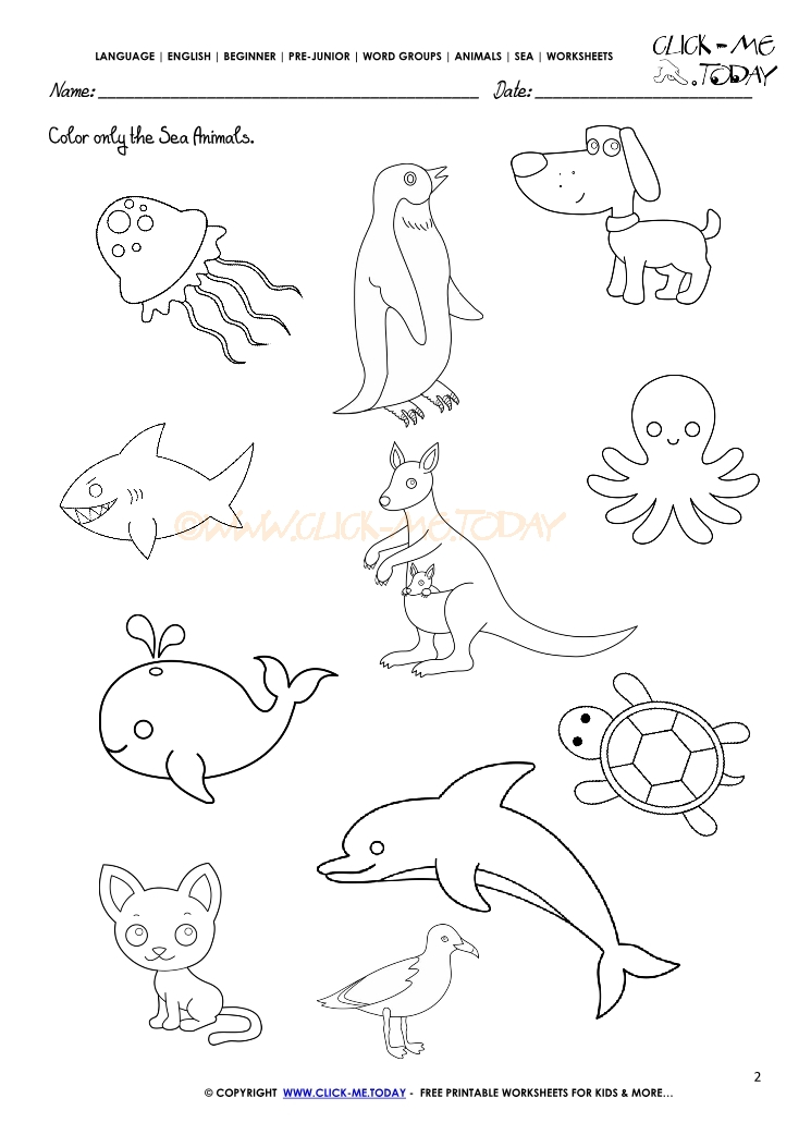 sea animals worksheet for kindergarten   science sea