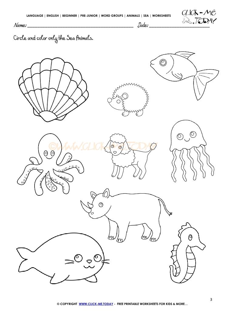 Sea Animals Worksheet Activity Sheet Circle 3