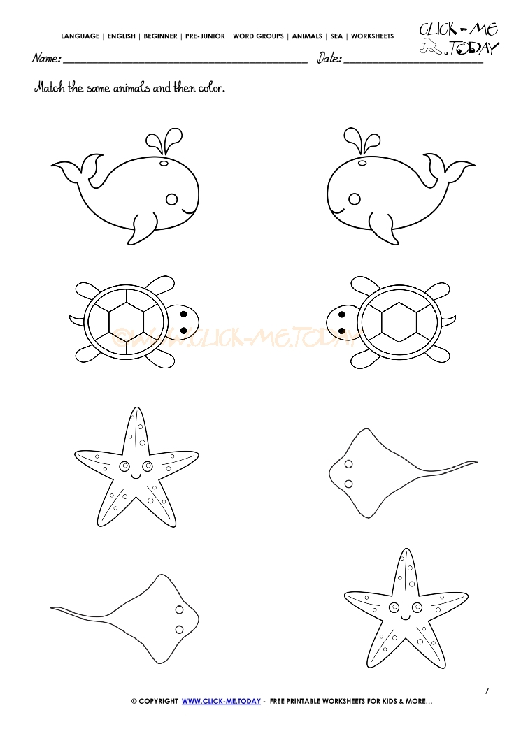 Sea Animals Worksheet Activity