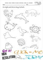 Sea Animals Worksheet - Activity sheet Color 5