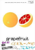 Printable Grapefruit flashcard | Wall card of Grapefruit
